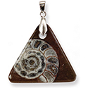 Ammonite Fossil Necklace - Triangle
