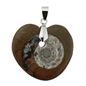 Fossil - Heart Shaped Necklace