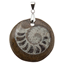 Fossil Ammonite- Round Necklace