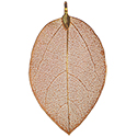 Leaf Assorted Colors Necklace - Gold